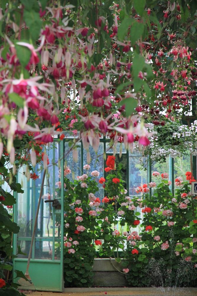 比利時Royal Greenhouses of Laeken