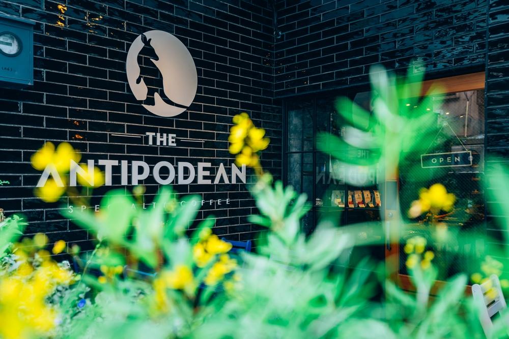 The Antipodean