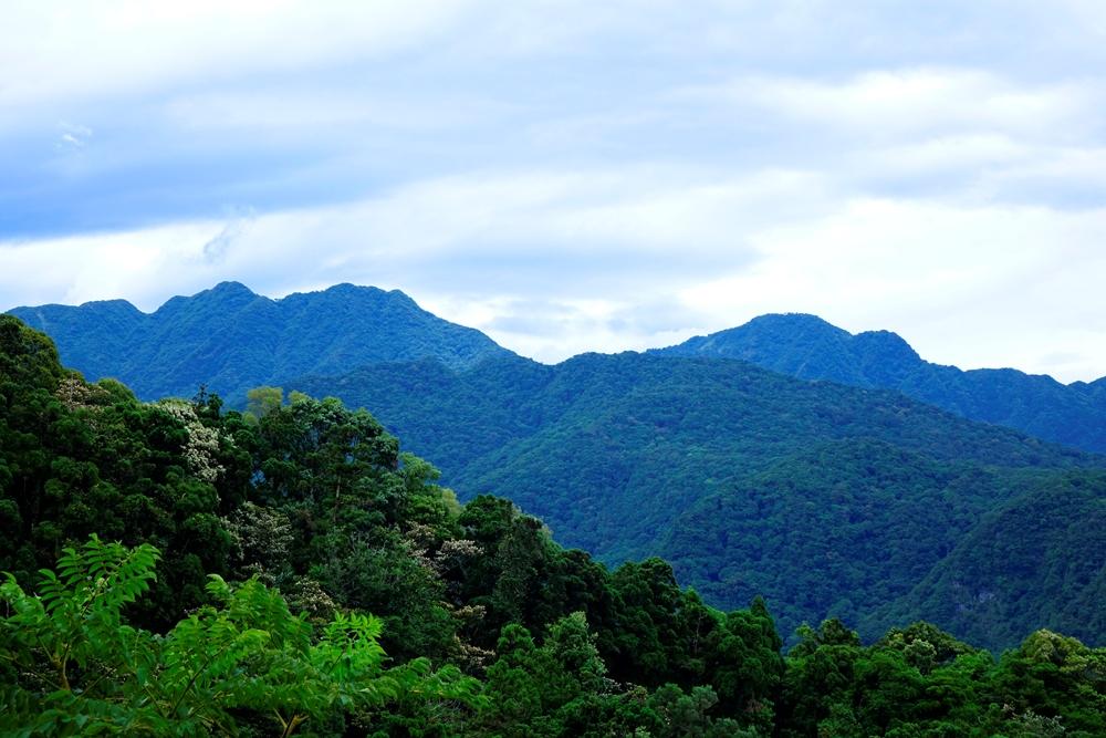 從東眼山望向南、北插天山,層疊蓊鬱的山巒