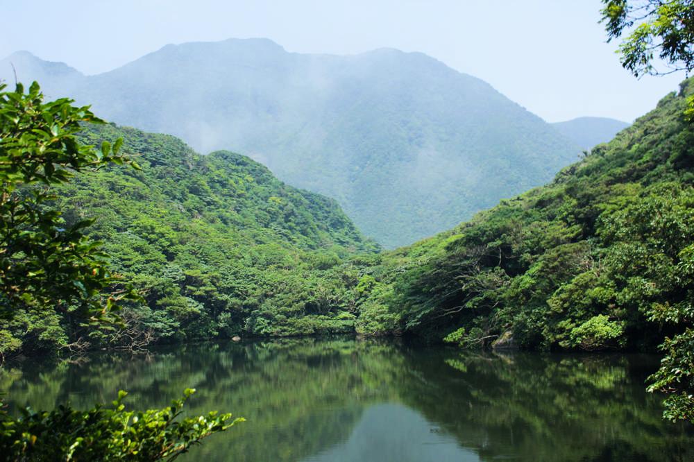 御藏島/伊豆諸島/東京離島/日本海島/東京