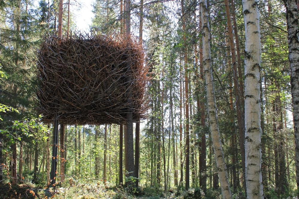 鳥巢/樹屋/Tree Hotel/瑞典